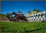 Santa Anita Day at the Races - General Ticket